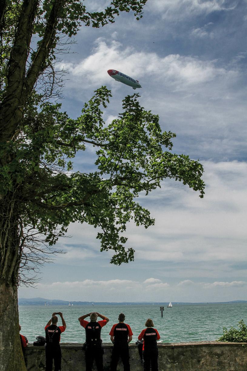 Am Himmel endecken wir schließlich doch noch ein fliegendes Exemplar.
