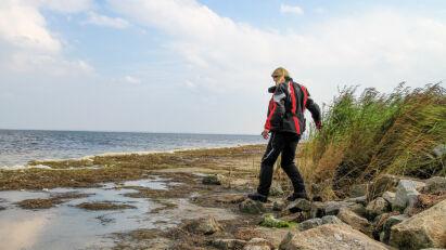 Parallel zur Küste, entlang des Barther Bodden, fahren wir zur letzten Station unserer Rundfahrt durch Vorpommern, nach Barhöft